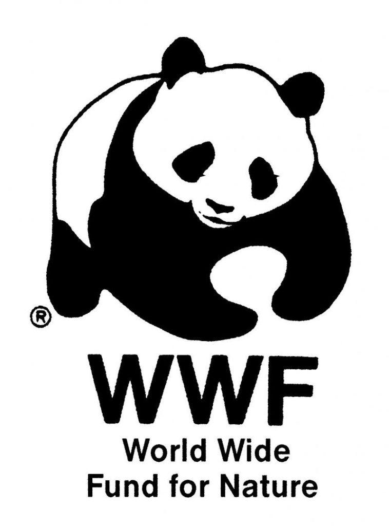 world wide fund for nature is looking for natural capital program Sample Resume Technical Skills publiez votre cv et recevez directement les offres de votre profil par email