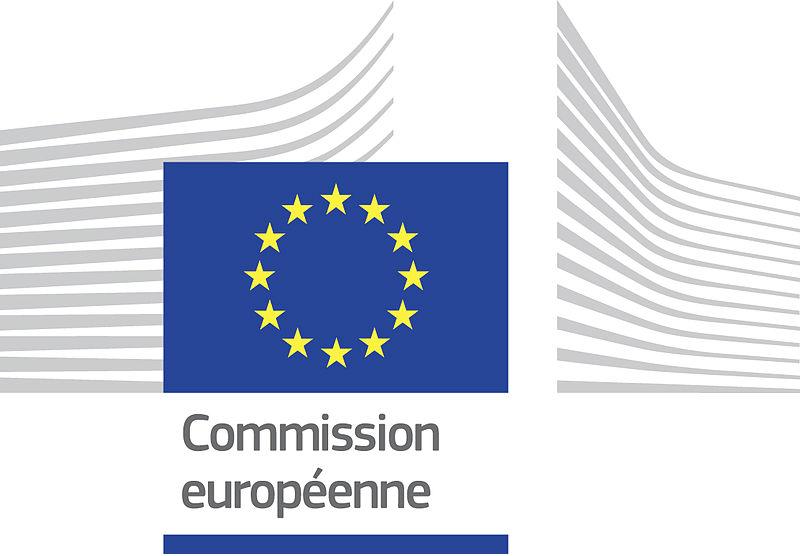 appel  u00e0 candidatures   stages a la commission europ u00e9enne